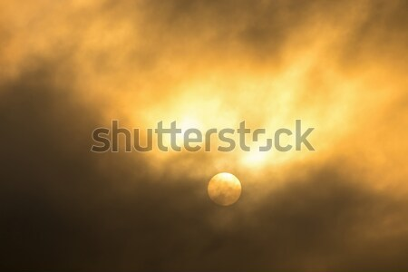 Nice clouds in a sunset light. Stock photo © digoarpi