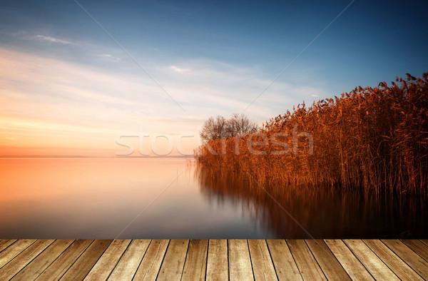 美しい 風景 湖 バラトン湖 午前 長い ストックフォト © digoarpi