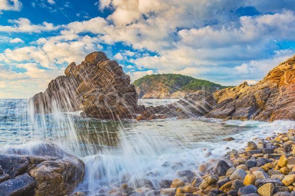 Nice landscape of the Spanish coastal in Costa Brava Stock photo © digoarpi