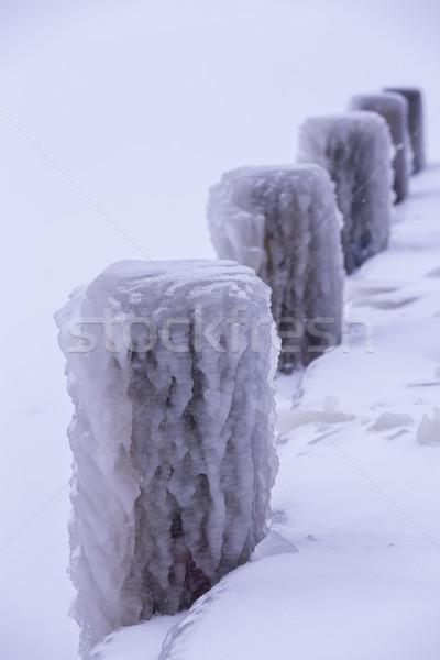 Cold winter day Stock photo © digoarpi