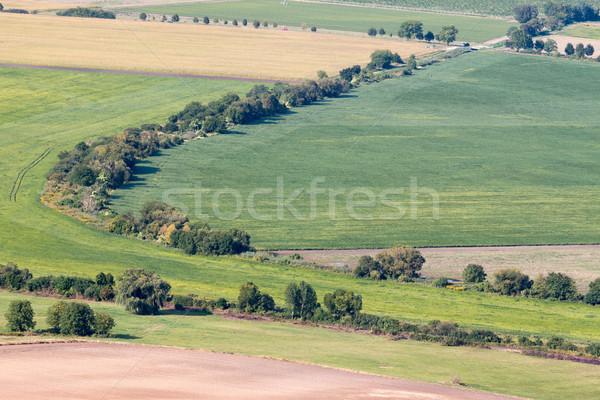 Húngaro paisagem estrada pôr do sol viajar belo Foto stock © digoarpi
