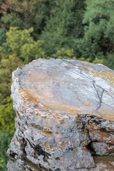 Foto d'archivio: Basalto · albero · luce · campo · verde · lago