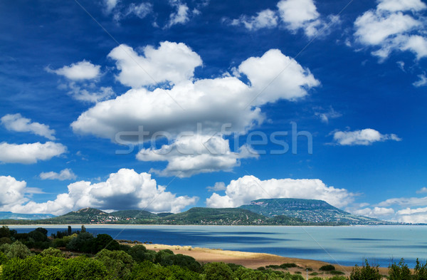 Landscape Stock photo © digoarpi