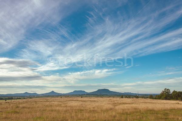 Landschap najaar weide Hongarije boom achtergrond Stockfoto © digoarpi