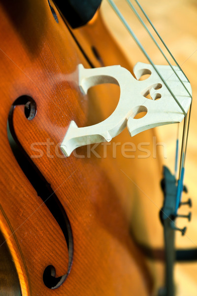 Cello Stock photo © digoarpi