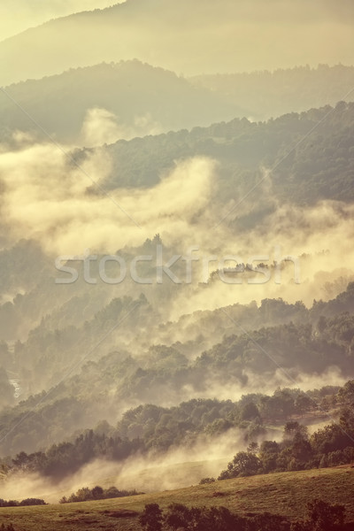 Majestic sunset in the mountains landscape. Stock photo © digoarpi
