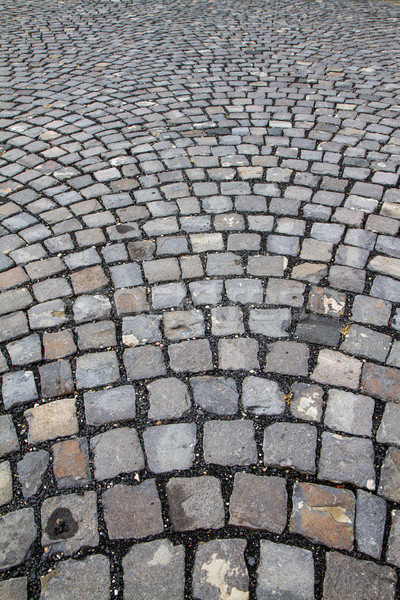 Cobblestone street Stock photo © digoarpi