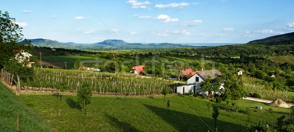 Landscape from Hungary Stock photo © digoarpi