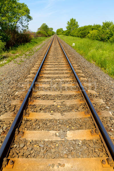 Chemin de fer scène rurale ciel nature train acier Photo stock © digoarpi