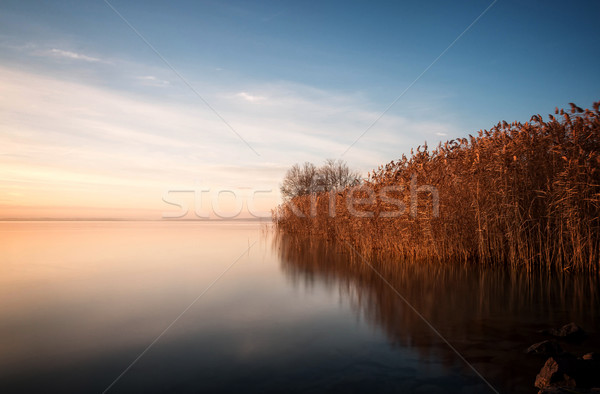 Güzel manzara göl Balaton Macaristan su Stok fotoğraf © digoarpi