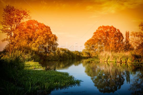 Zonsondergang stilleven bomen rivieroever hemel hout Stockfoto © digoarpi
