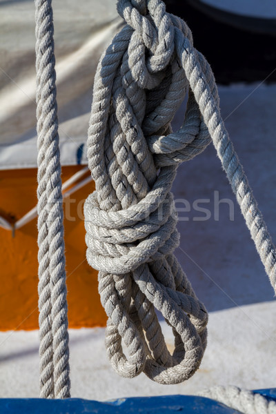 Detail of a ship's rigging Stock photo © digoarpi