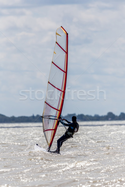 Sörfçü göl Balaton Macaristan su bahar Stok fotoğraf © digoarpi