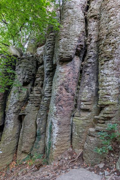 Columnar basalt Stock photo © digoarpi