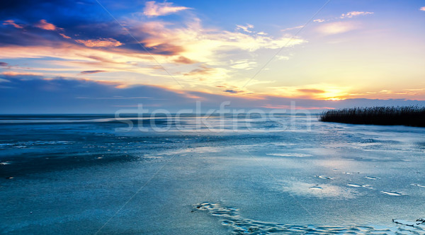 Landscape in winter from a froze lake  Stock photo © digoarpi