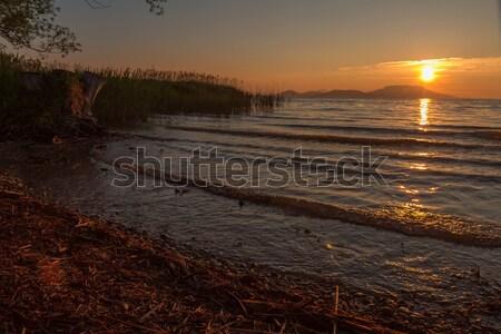 Piękna Świt jezioro Balaton Węgry lata Zdjęcia stock © digoarpi
