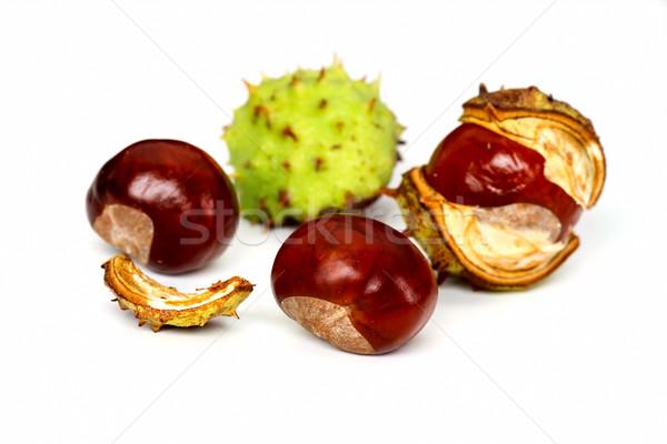 Chestnuts Stock photo © digoarpi