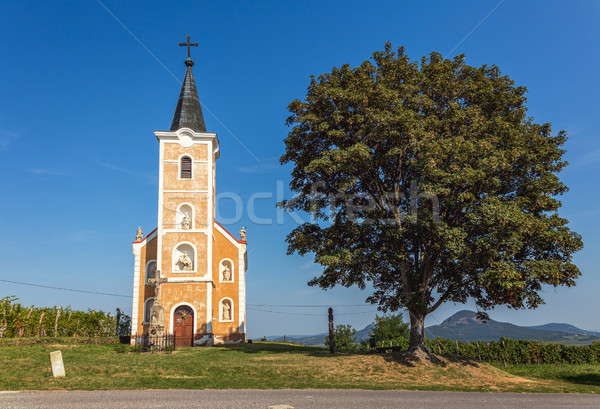 Beautiful old chapel from Hungary  Stock photo © digoarpi