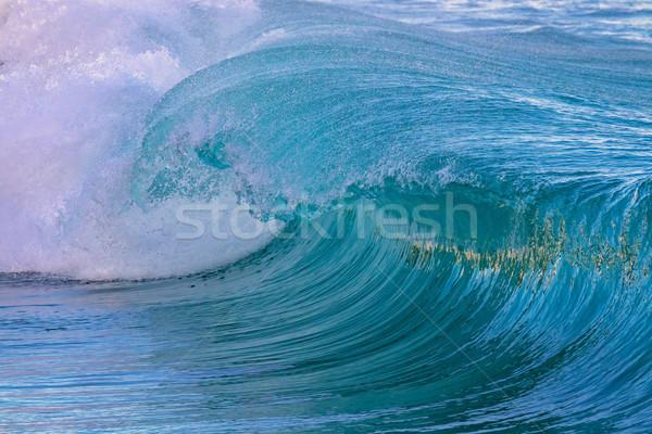 Beautiful Blue Ocean Wave in Costa Brava coastal in Spain Stock photo © digoarpi