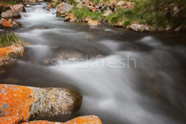 Beautiful river detail with mossy rocks Stock photo © digoarpi