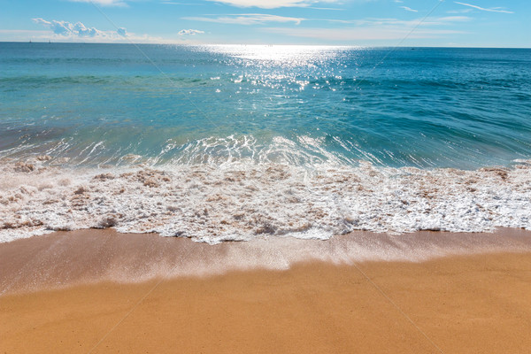 Wave Stock photo © digoarpi