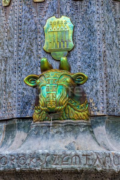 красивой фонтан Венгрия здании улице металл Сток-фото © digoarpi
