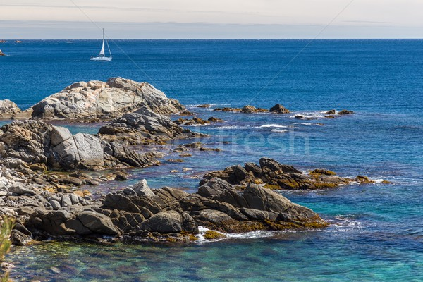 Detail of the Spanish coast at summer  Stock photo © digoarpi