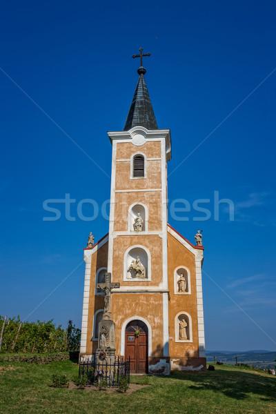 Mooie oude kapel Hongarije boom wijn Stockfoto © digoarpi