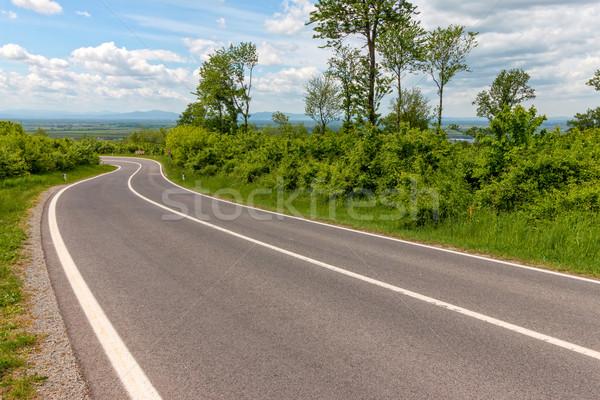 Egyenes aszfalt út vezető erdő természet Stock fotó © digoarpi