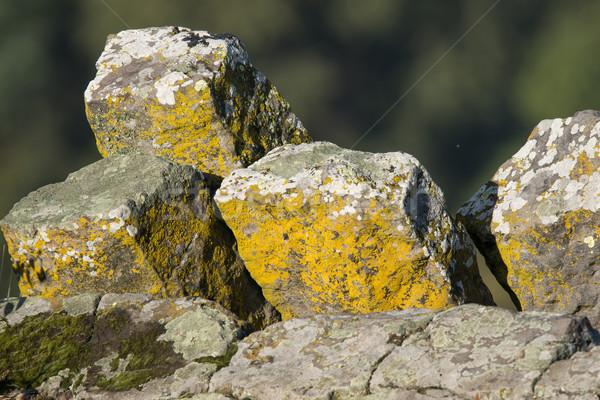 Interesting columnar basalt at Hungary Stock photo © digoarpi