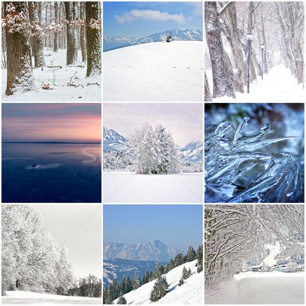 Photo collage of cold winter days  Stock photo © digoarpi