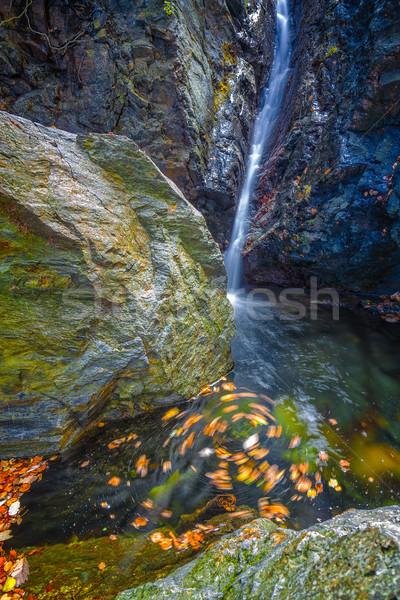 Beautiful veil waterfalls, mossy rocks, rotating leaves Stock photo © digoarpi