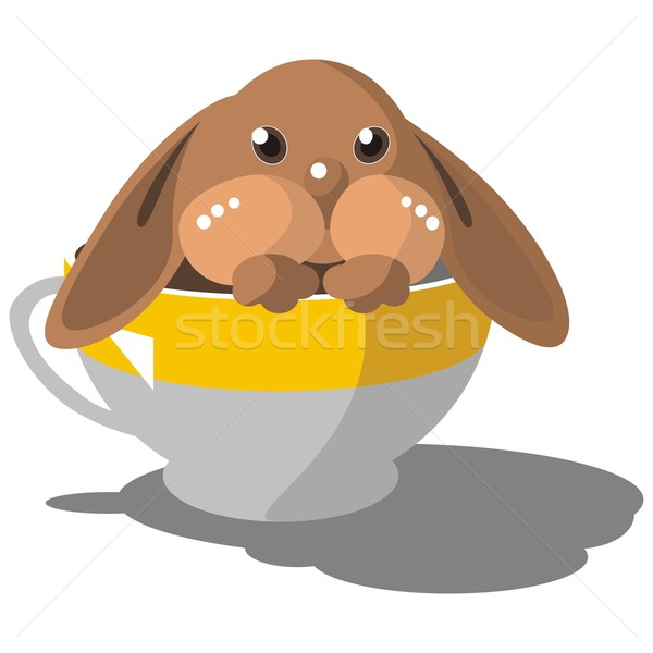 Hare in cup in color 08 Stock photo © Dimanchik