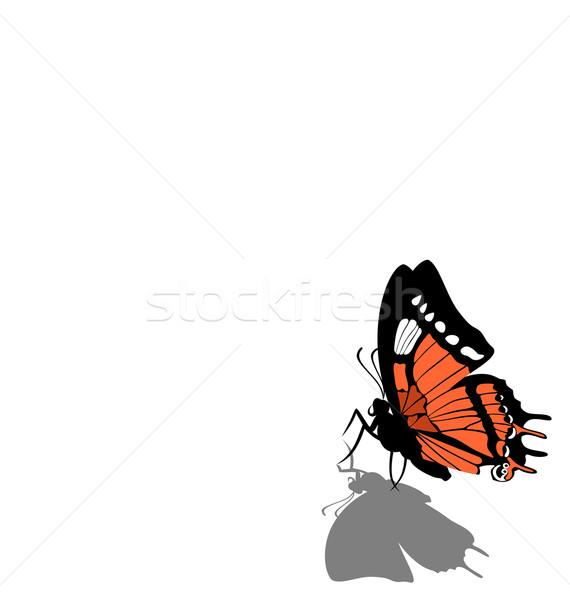 Motyl papieru wektora streszczenie charakter projektu Zdjęcia stock © Dimanchik
