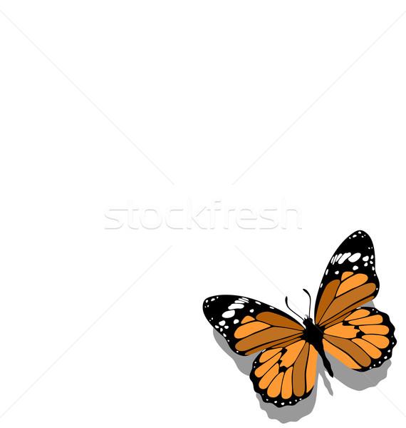 Butterfly on paper  11 Stock photo © Dimanchik