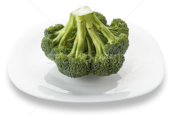 Broccoli floret Stock photo © DimaP