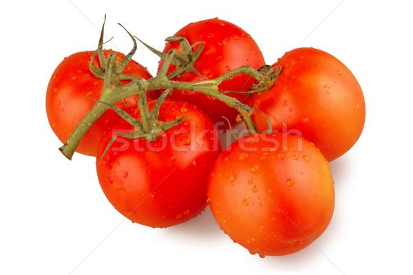 Umido pomodori isolato bianco acqua alimentare Foto d'archivio © DimaP