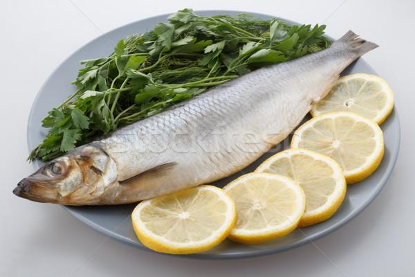 herring Stock photo © DimaP