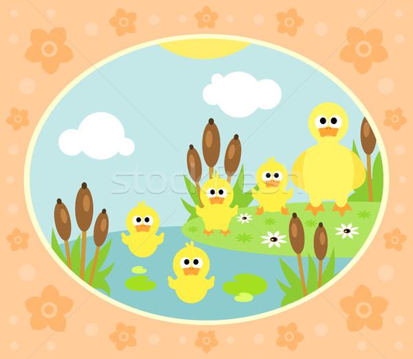 Ferme canard drôle fleur famille printemps Photo stock © Dimpens