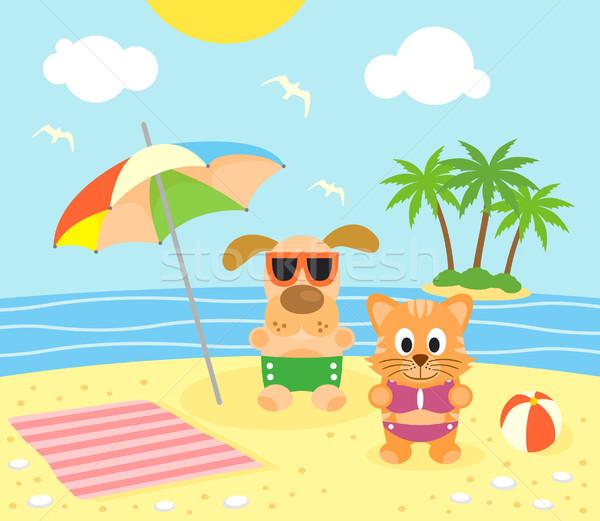 Nyár macska kutya tengerpart vicces égbolt Stock fotó © Dimpens