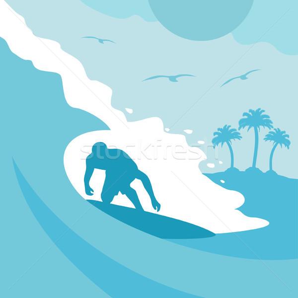 Nyár szörfös hullám kártya víz fény Stock fotó © Dimpens