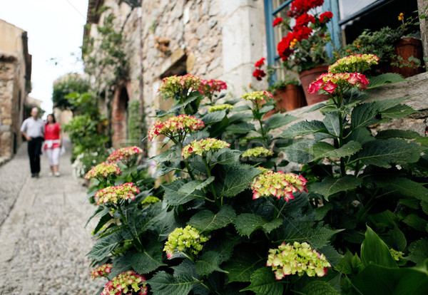été village fleurs couple médiévale Photo stock © Dinga