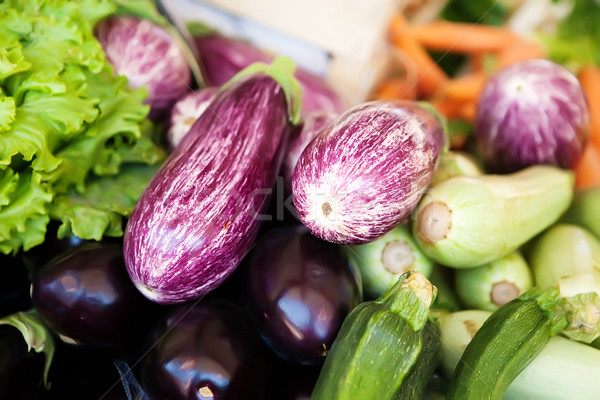 Spotty purple eggplant Stock photo © Dinga