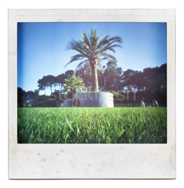 Instant picture 'Summertime' Stock photo © Dinga