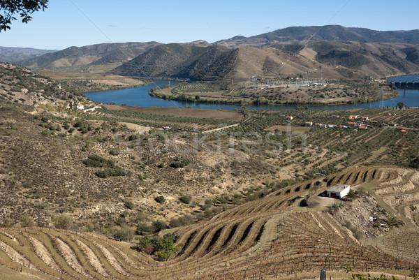 Stok fotoğraf: Nehir · vadi · Portekiz · sonbahar · dünya · miras