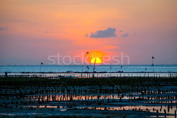Boerderij veld zonsondergang Indonesië water voedsel Stockfoto © dinozzaver