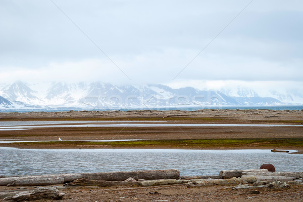 Verano agua paisaje mar nieve Foto stock © dinozzaver