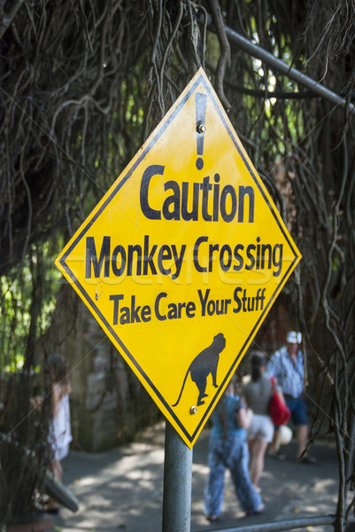 Warning sign against monkeys crossing the road Stock photo © dinozzaver