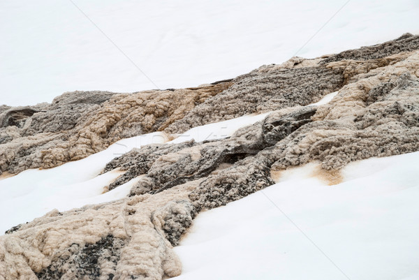 Unique mixture of melting snow and water Stock photo © dinozzaver