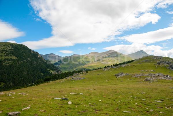 表示 山 スペイン 緑 丘 美 ストックフォト © dinozzaver